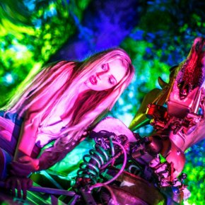 Alice in Acid Land