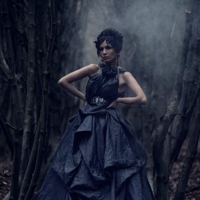 Queen of the Dark Wood